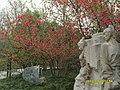 浣花溪公园 - panoramio (3).jpg