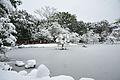 雪の金閣寺 Kinkakuji temple in snow (5360144069).jpg