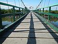 0011jfDaang Fields Fish Bridge River Poblacion Orion Bataanfvf 07.JPG