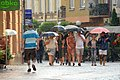 02017 0356 Spaziergang im Sommerregen.jpg