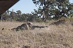 1-140th Aviation Battalion Soldiers train to survive 151019-Z-JM073-077.jpg