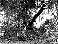 155 mm Kanone bei Dagupan.jpg