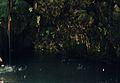 173Zypern Aphroditebad (13904802268).jpg