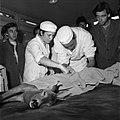 18.05.76 à l'école vétérinaire de Toulouse, opération d'un brocard jeune cerf (1976) - 53Fi888.jpg