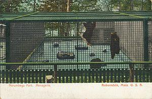 Norumbega Park - Image: 1910 09 02 MA Auburndale Menagerie Norumbega Park 01