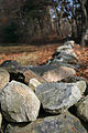 2009 Lexington stone wall Massachusetts 4101551020.jpg