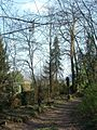 20120324Soldatenfriedhof Spicherer Berg04.jpg