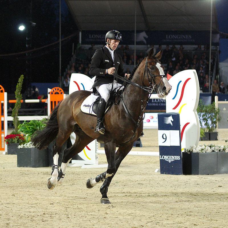 Le cavalier a souvent l'habitude demonterses mains pour ralentir et remettre en ordreses chevaux avant un saut comme on le voit sur cette photo. On observe quele cheval porte haut et droit son encolure et qu'il y a un fort soutien des mains, dans cette attitude, le garrot est affaissé et les abdominaux se relâchés.