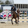 2013 Longines Global Champions - Lausanne - 14-09-2013 - Niklaus Rutschi et Windsor XV 1.jpg