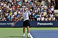 2013 US Open (Tennis) - Qualifying Round - Andrey Gobulev (9699292321).jpg