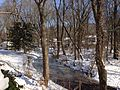 2014-01-23 10 37 04 View north along the West Branch Shabakunk Creek.JPG