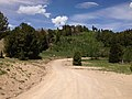 2014-06-24 12 58 46 View north along Elko County Route 748 (Charleston-Jarbidge Road) about 15.1 miles north of Charleston, Nevada at Bear Creek Summit.jpg
