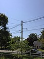 2014-08-27 13 14 29 Utility pole and street lamp at the intersection of Terrace Boulevard and Dunmore Avenue in Ewing, New Jersey.JPG