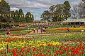 2015-09-18 Floriade Canberra 2015 - 14.jpg