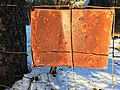 2017-365-32 No Rusting Allowed At Any Time (32618848636).jpg
