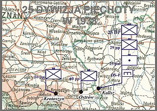 25th Infantry Division (Poland)