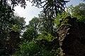 26.7.16 Purkarec to Hluboka nad Vltavou 32 (28286155560).jpg