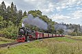 99 7241-5, Germany, Saxony-Anhalt, Drei Annen Hohne Railway station (Trainpix 177304).jpg