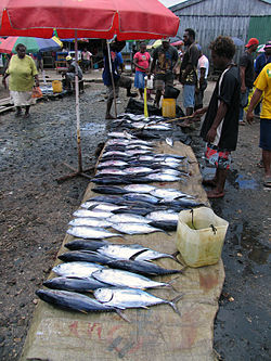 Fish for sale in the Auki market