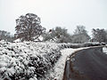 A road into Old Somerby, Lincolnshire - Dec 2005.JPG