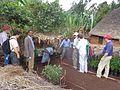 A visit to a fruit tree nursery (Photo Credit-ILRI-Yoseph Mekasha) (25509274264).jpg