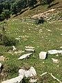 Abbeveratoio sopra Alpe Squadrina.jpg