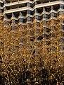 Above Rittenhouse Square - panoramio.jpg