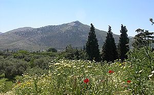 Marathon, Greece - The plain of Marathon today