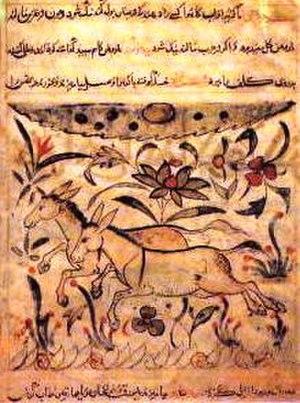 Kitāb al-Hayawān - Page from the Kitāb al-Hayawān by Al-Jahiz.