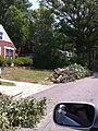 Alexandria Storm, August 2010 (4872829778).jpg