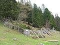 Alpenpflanzengarten Vorderkaiserfelden.jpg