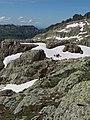 Alpine Ibex (Bouquetin) @ Lacs Noirs @ Hike to Lacs des Chéserys, Lac Blanc, Lac Cornu & Lacs Noirs @ Chamonix (15174464789).jpg
