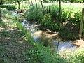 Aluze (Saône-et-Loire, Fr) la Thalie près de sa source à Eutonnoir.JPG