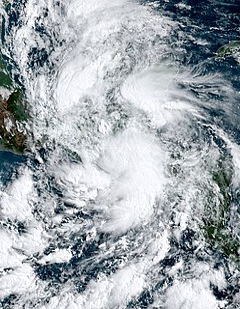 Tropical Storm Amanda (2020) Pacific tropical storm in 2020