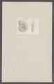 Ammonites spec. - - Print - Iconographia Zoologica - Special Collections University of Amsterdam - UBAINV0274 091 01 0016.tif