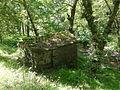 Antiguo molino al lado del Río Lérez (Pontevedra, Galicia, España) 02.JPG
