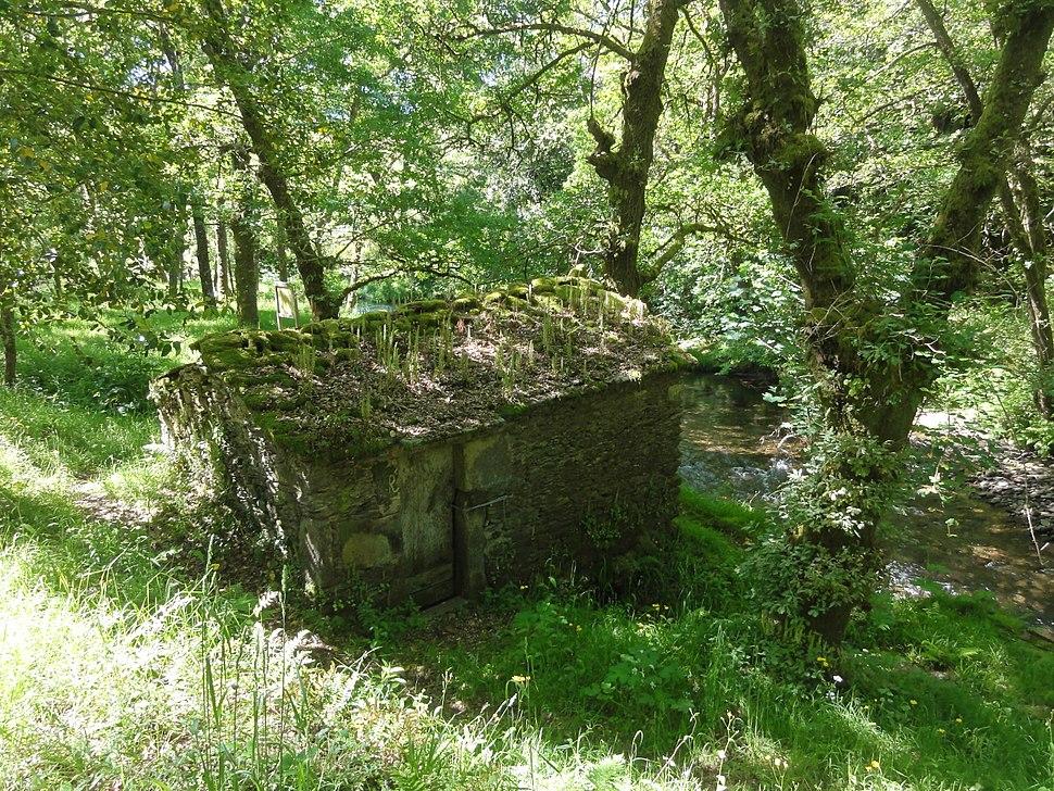 Antiguo molino al lado del Río Lérez (Pontevedra, Galicia, España) 02