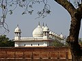 Architectural Detail - Agra Fort - Agra - Uttar Pradesh - India - 07 (12612923225).jpg