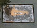 Arno-Schmidt-Platz 1, Celle, Jean Ipousteguy, Lecture, Die Lesende, 1985, Tafel im Regen, Wasserstrukturen, rostende Schrauben.jpg