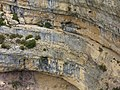 Around Minerve limestone (1040046827).jpg