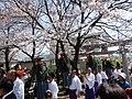 Arrived at Suzumiyasuwa-shrine, Tenzushi-dolls.JPG