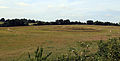 Art earthwork landscape sculpture Woodland Trust Theydon Bois Essex 13.JPG