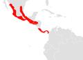 Artibeus toltecus map.png