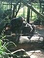 Artis, Zoo, Dierentuin - panoramio (112).jpg