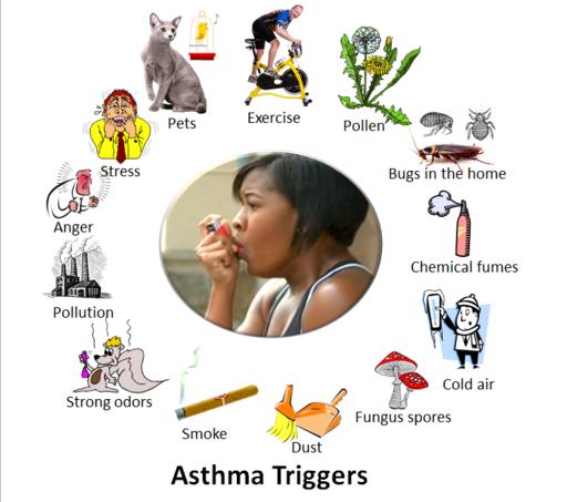 perkara yang mencetuskan asthma