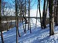 Aukštųjų Šančių ąžuolynas, piliakalnis.JPG