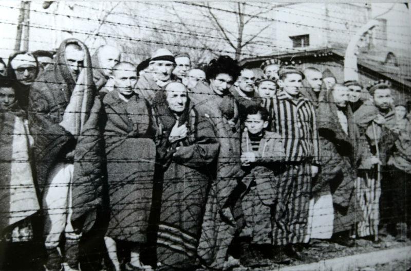 File:Auschwitz Liberated January 1945.jpg