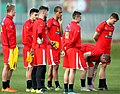 Austria national under-21 football team - Teamcamp November 2015 (131).jpg