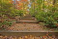 Autumn Arboretum Stairway - HDR (21478998971).jpg