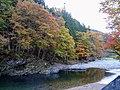 Autumn leaves in Pascal Kiyomi.jpg
